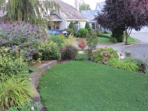 A few months later the lawn and beds look great.