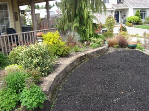 The old lawn has  one inch of quarter-ten gravel and one inch of compost on it.